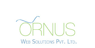 Web Solutions Company